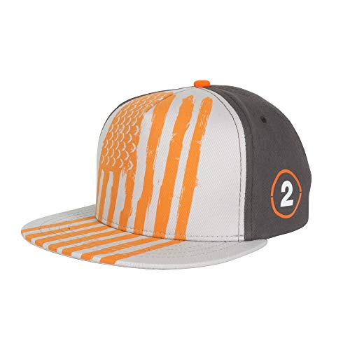 The Division 2 Flag Snapback